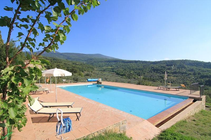 Pool with panoramic views - Castagnatello Country House - Vigna unit - Seggiano - rentals