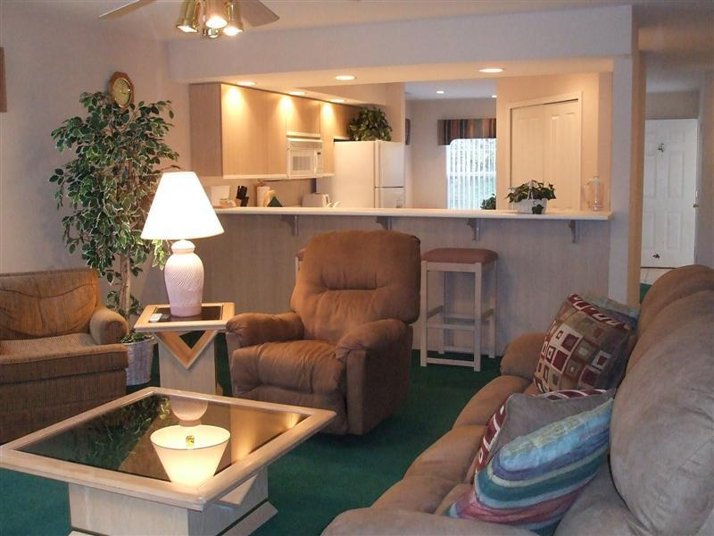Comfortable Living Room - Fisherman's Delight Lake Front* Wifi* Marina *Fish - Branson - rentals
