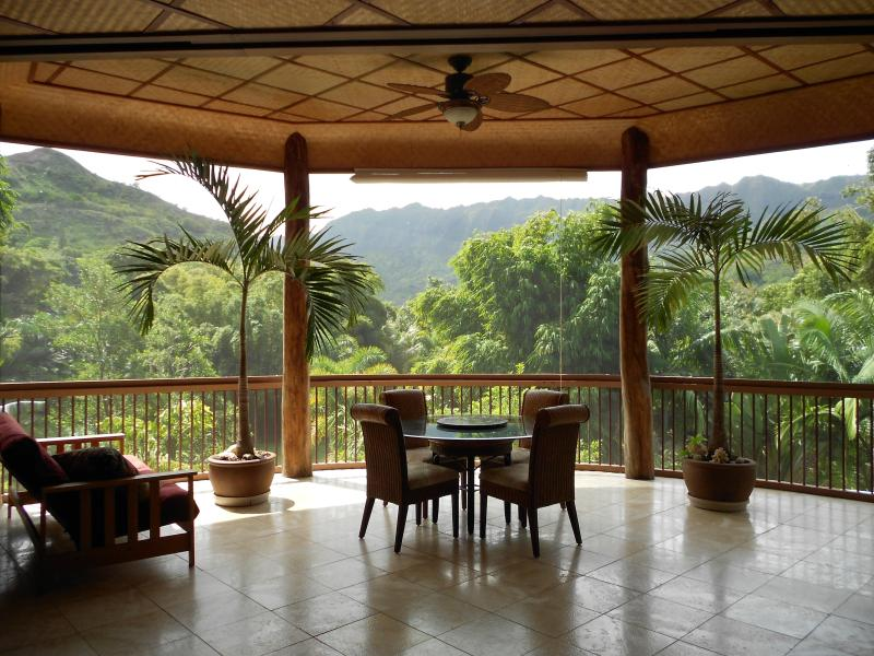 Pamaramic view thru  screened living room - North Shore Nature Retreat- LAST MINUTE DISCOUNTS - Hanalei - rentals