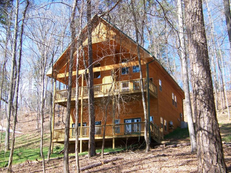 View of house from lake - Spacious new home on Lake Hartwell - Sleeps 11 - Martin - rentals