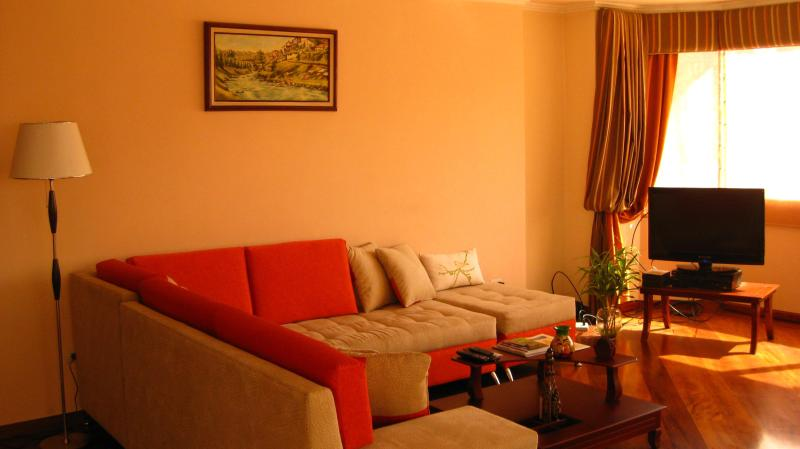 Living Area - River View Central Cuenca, In front of Pumapungo - Cuenca - rentals