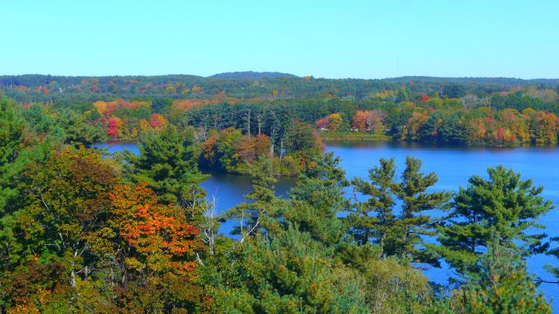 Beautiful View from every room every day! - Beautiful & Spacious & luxurious 2BR/2Bath Home - Natick - rentals