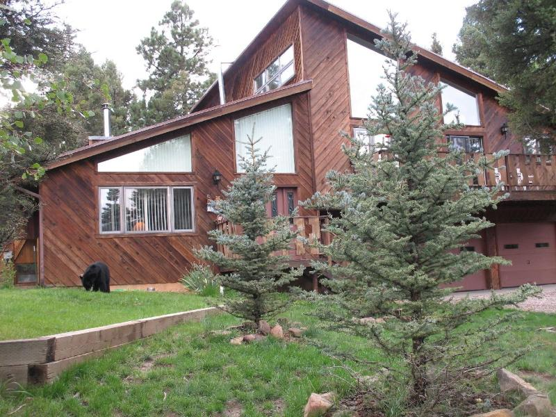 Front view of Home - Bear's Crossing; Luxury Mountian Accommodations - Angel Fire - rentals