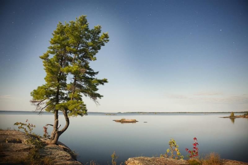 Discover Privacy, Peace & Tranquility - Rent At The Lake - Caledonia - rentals