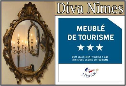 Unique - and affordable - opulence - Diva-Nîmes - unique ambiance in a prime location - Nîmes - rentals