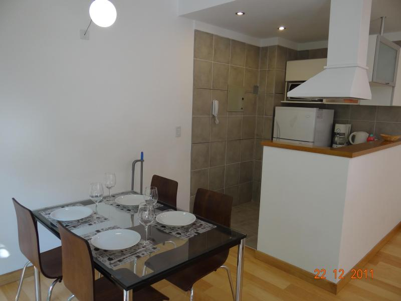 Impecable studio in Palermo Soho - Image 1 - Buenos Aires - rentals
