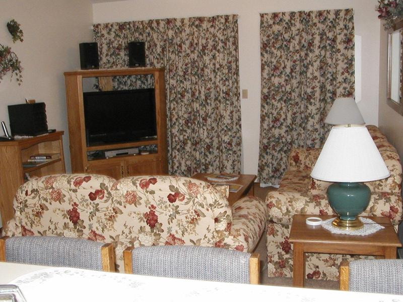Living Room Area - Two bedroom Condo one mile from Silver Dollar City - Branson West - rentals