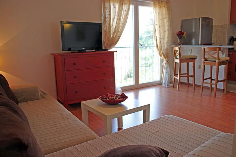 SW position gives a great light and beautiful, direct view to the sea & islands - San Elena, sea view for memorable holidays in Rovinj - Rovinj - rentals