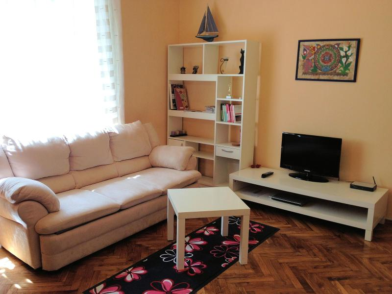 Living room to rest and relax - Apartment Sarema - Zagreb center - Zagreb - rentals