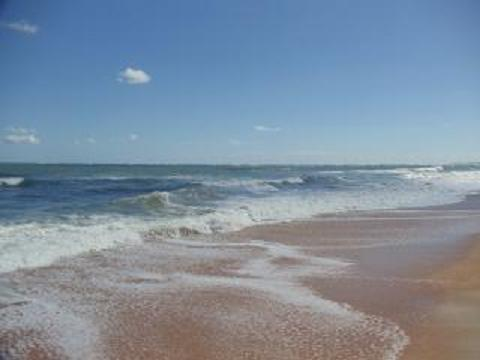 Beach - Beautiful Two Bedroom Condo in St Augustine - Saint Augustine - rentals