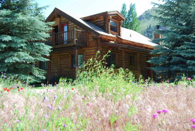 Log Home in Summer - Beautiful Log Home in Hailey to rent Summer/Winter - Hailey - rentals