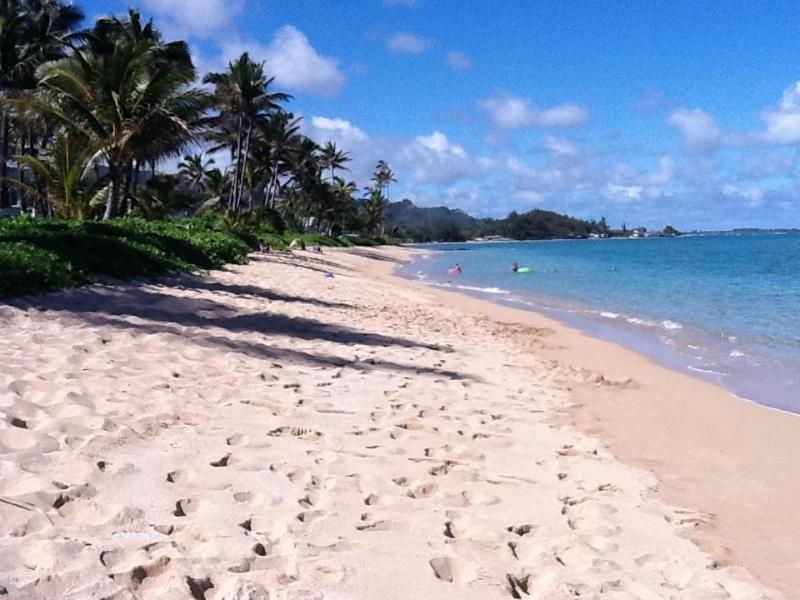 Beach in front of cottage looking north - Dreamy Beach Cottage on Tropical Sandy Beach - Hauula - rentals