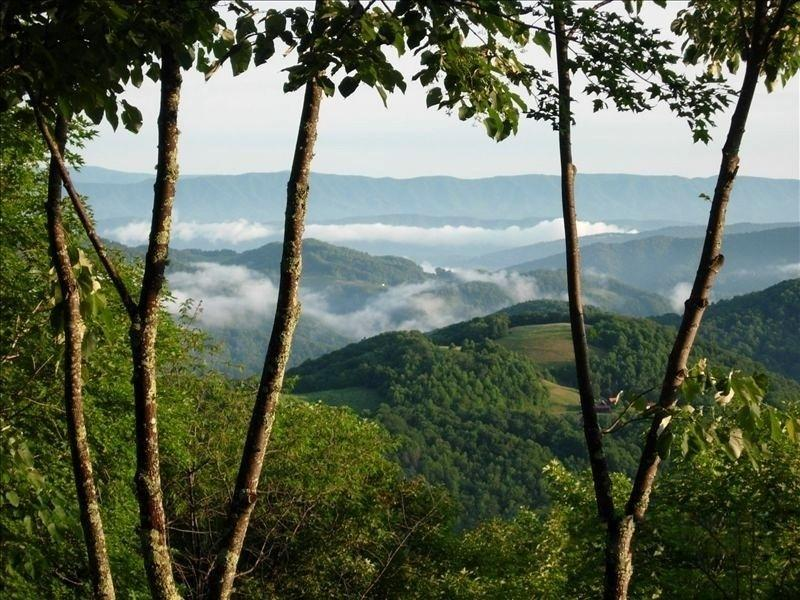 Summer time deck view - Beautiful Mountain View & Luxury Home - Beech Mountain - rentals