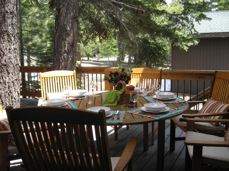 Deck view - Tahoe Donner Spacious Cabin in a Pine Forest: WiFi - Tahoe Donner - rentals