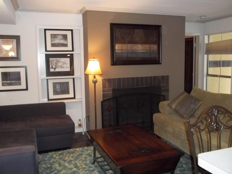 Living Room - 2BR /2BA Condo in the Heart of Dwntwn Austin - Austin - rentals