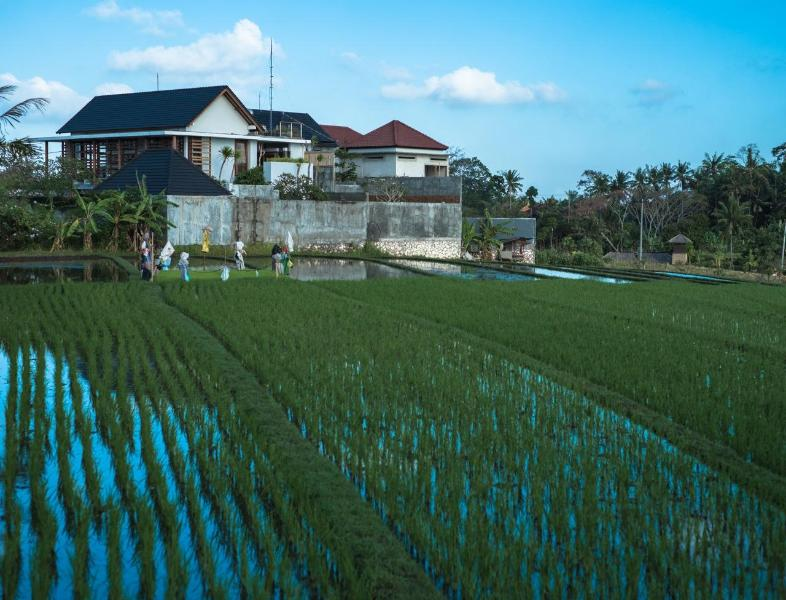 Villa Chilla is middle house of three in rice field - 3BR Immaculate Home in Quiet Bali Neighborhood - Bali - rentals
