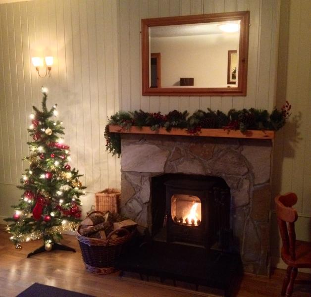 Cedar Cottage At Highland Holiday Cottages - Image 1 - Aviemore - rentals