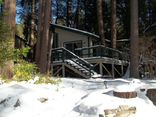 Front Yard during winter season - Cozy Cottage Nestled in the Pines, Walk to Town - Idyllwild - rentals