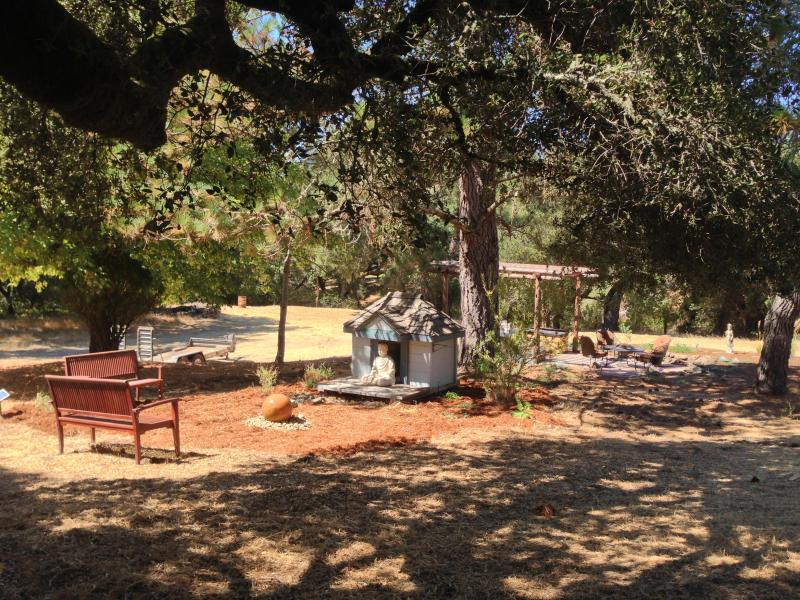 Meditation, Outside Dinning, Veggie Garden, Reading Garden are places to find your zone without leaving. - Call our Mountain Home A Park -- POLITE PETS OK - Santa Cruz - rentals