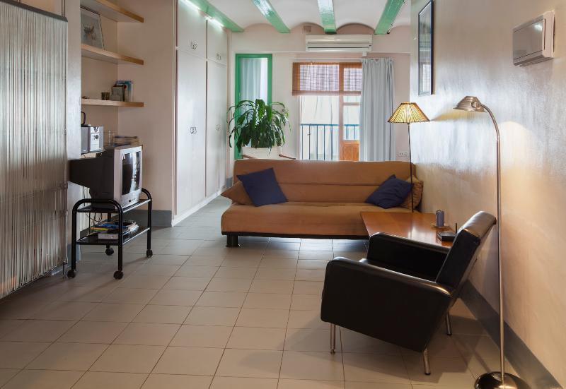 Living room and balcony overlooking the street. View from inside gallery and bedroom - Sunny apartment in the historic Barrio del Carmen - Valencia - rentals