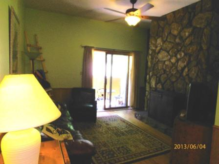 Gold Creek #204 - Image 1 - Angel Fire - rentals
