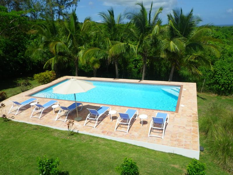 Large Swimming Pool for Lounging, Laps and Cannonballs - La Escapada - Secluded Pool - Peaceful Privacy - Vieques - rentals