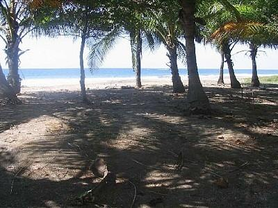 One of the Many Beautiful Views  - Costa Rica Paradise Right on the Beach - Playa Junquillal - rentals