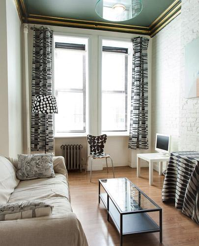 Living room with southern exposure - Trendy 1 BR in the Heart of the East Village - New York City - rentals