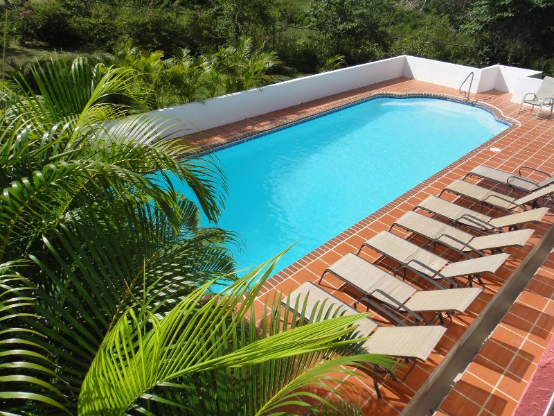 Sandia Beach House -  walk to the beach, views, pool - Image 1 - Vieques - rentals