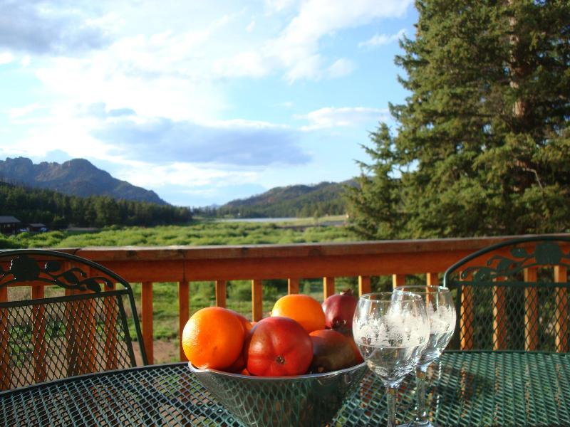 ENJOY BEAUTIFUL VIEWS FROM THE DECK - PIKES PEAK RETREAT: Panoramic Mtn Views/Pike Natl - Sedalia - rentals