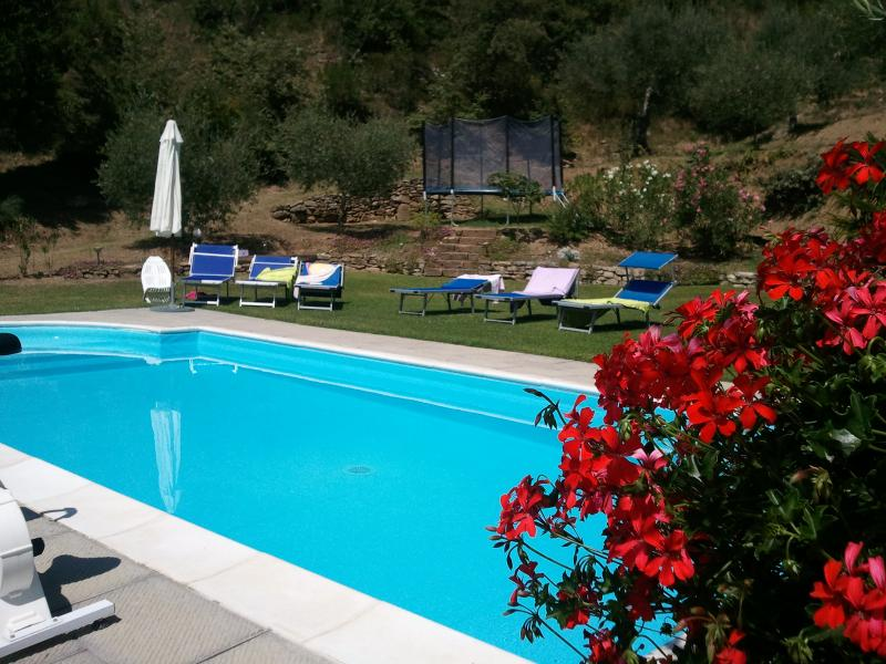 Villa Near Cortona with Two Apartments Ideal for Families - Casa Lola - Image 1 - Terontola - rentals