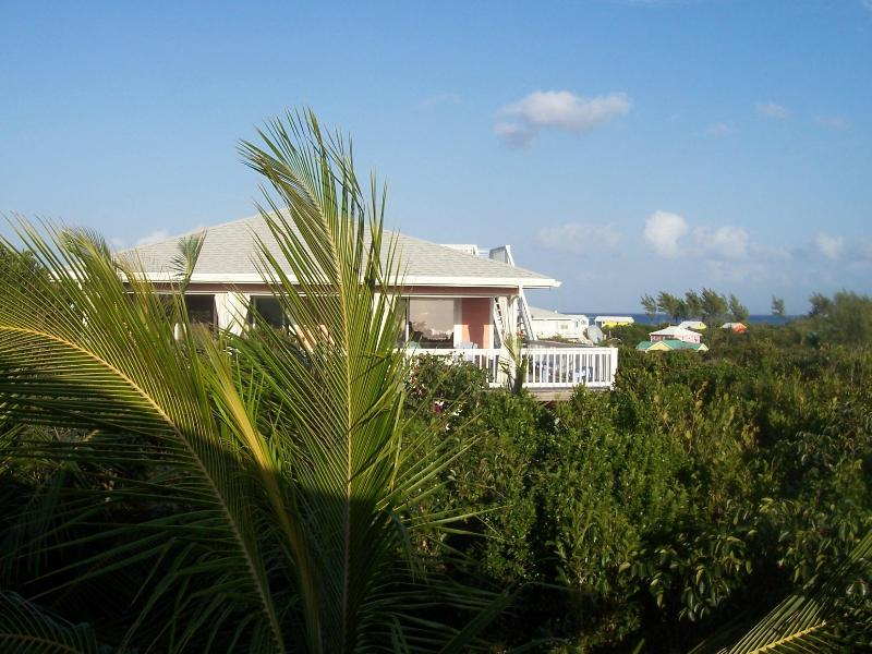 L'il Gecko Cottage - small and sweet! - Affordable, Adorable & Convenient - 1 Br  w/ views - Great Guana Cay - rentals