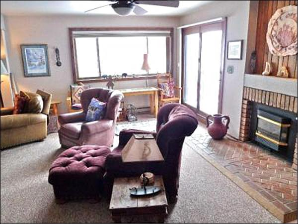 Sunny Living Room Includes a Gas Fireplace - Charming Remodeled Condo - Comfortable Accommodations (1191) - Crested Butte - rentals