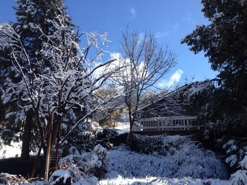 Front of home after a snow storm - The Fishermens Oasis, hot tub! Close to Yosemite! - Oakhurst - rentals