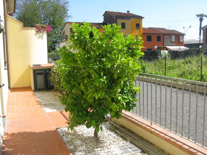 The front garden with the grapefruit tree - Casa di Laura Lucca - near the centre with garden - Lucca - rentals