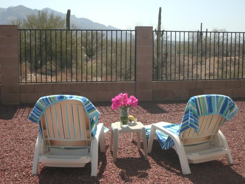 Custom Home w/Amazing Views Near Golf,Pool,Trails - Image 1 - Tucson - rentals