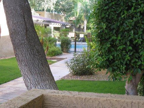 PATIO LOOKING AT POOL - 2 BD/2BTh split Masters,  great Location & Value! - Scottsdale - rentals