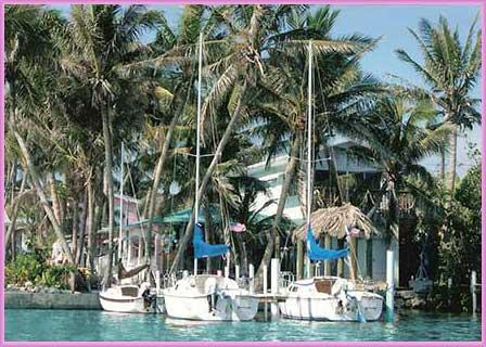 Conch Key TreeTop Cottage with 23' Sailboat - Image 1 - Conch Key - rentals