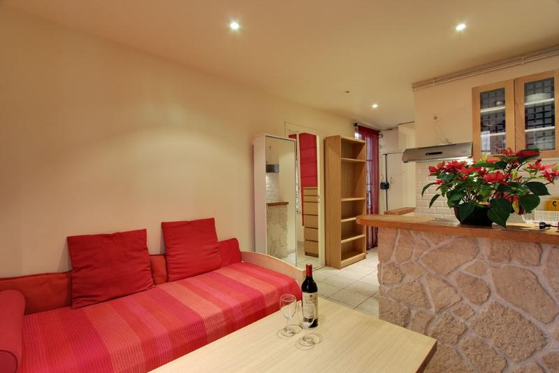 Lovely One Bedroom Paris Ancienne Comedie Odeon - Image 1 - 6th Arrondissement Luxembourg - rentals