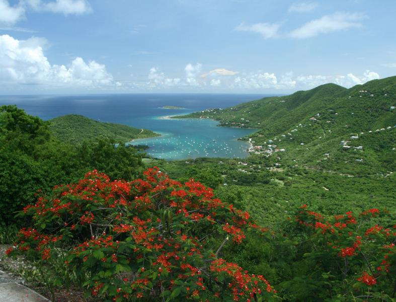 Yes - this is the view from the house! - In The Stars St John USVI 4 br with 55 ft lap pool - Coral Bay - rentals