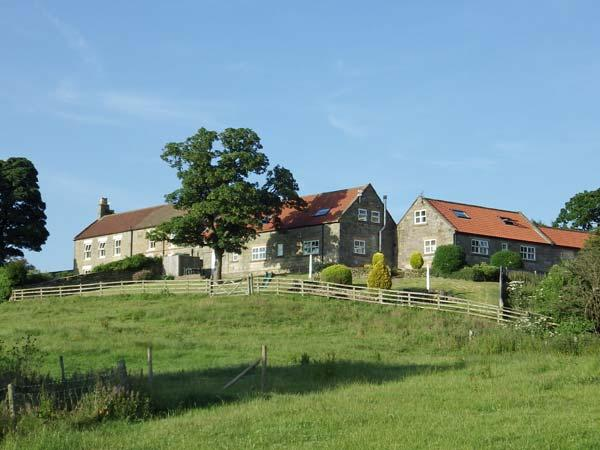 BUTTERCUP COTTAGE, near Whitby, scenic walks, off road parking and a shared garden in Castleton Ref 16250 - Image 1 - Castleton - rentals