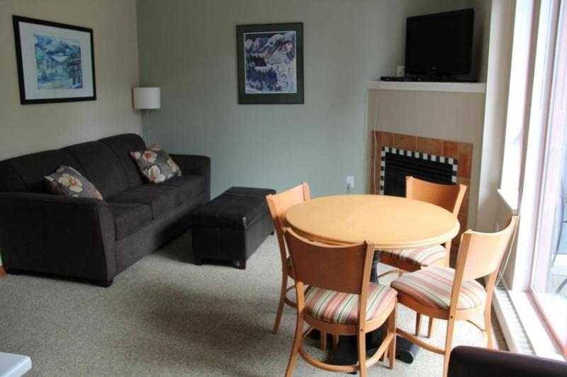 Wonderful One Bedroom Corner Condo with 2 Decks - The Olafson Family & The Tiechko Family - Whistler - rentals