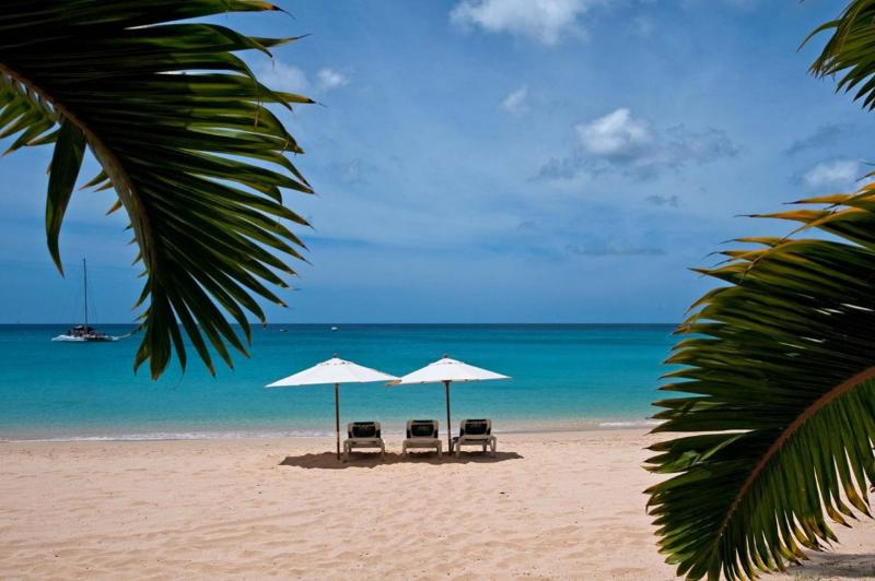 Coral Cove 2 - The Mahogany Tree at Paynes Bay, Barbados - Beachfront, Pool, Trade Winds - Image 1 - Saint James - rentals