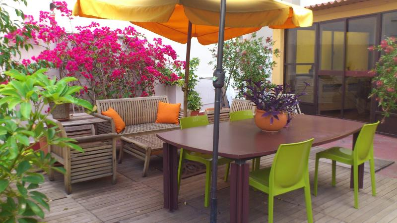 Terrace & Garden - Cozy apartment with big terrace /WIFI - Valencia - rentals