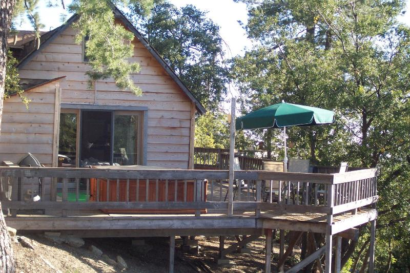 The cabin - Pet friendly cabin with privacy and great views - Idyllwild - rentals