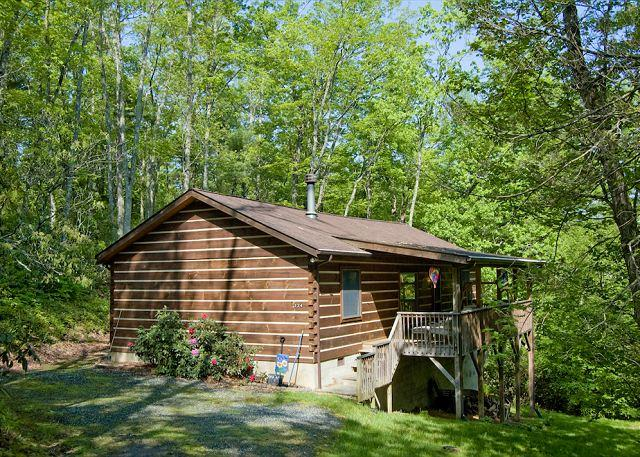 Todd NC Log Cabin Vacation Rental - Near Boone and West Jefferson - Image 1 - Fleetwood - rentals