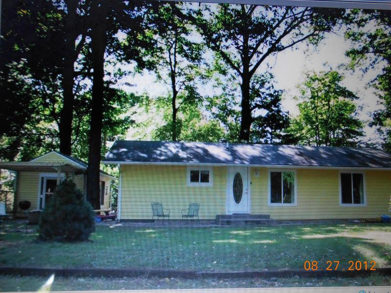 Charming cottage in the woods of the Lake Michigan Dunes south of South Haven, MI - Delightful Cottage in Lake Michigan Dunes! So Fun! - South Haven - rentals