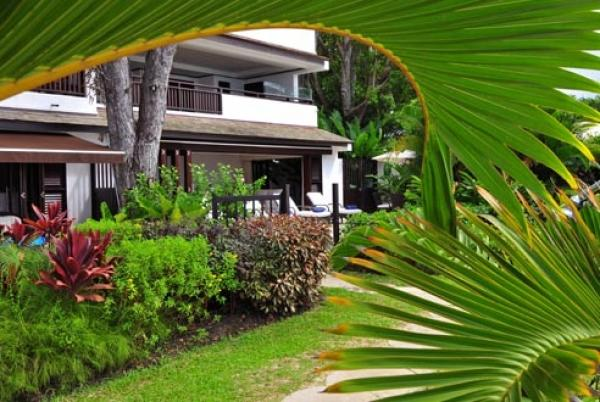 Lush Greenery - Coral Cove 1: Modern Beachfront Apartment - Paynes Bay - rentals
