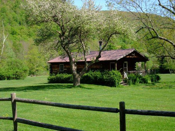 Cold Spring Lodge - 2 BR Catskill Mountain Cabin - Image 1 - Big Indian - rentals