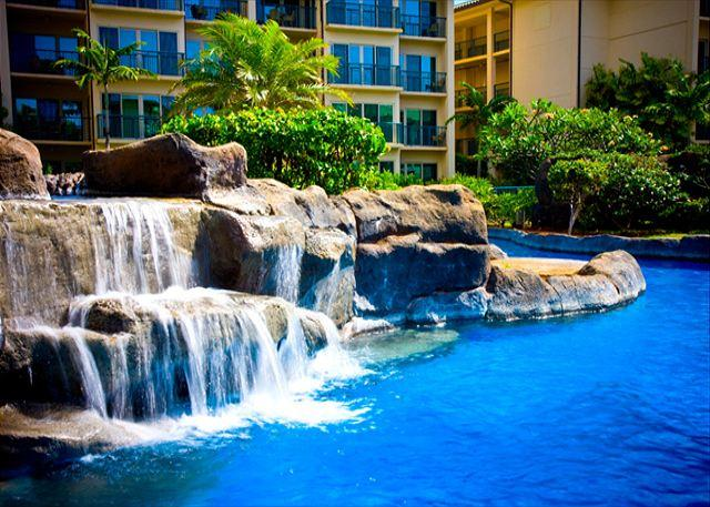 THREE Beds** Garden view VALUE** SA $189/nt** WOW Call NOW - Image 1 - Kapaa - rentals
